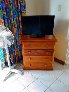 32 in Flat Screen TV with Cable Service.