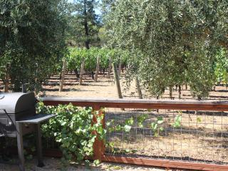 3 Bedroom House with Vineyard Views, St. Helena