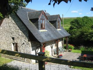 Blaendyffryn Fach  Rural place by open mountain, Llanllwni
