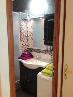 Vasque large miroir, rangement et lave linge