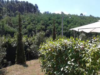 casa  con  giardino nella verdeggiante Toscana:, Ponte a Moriano