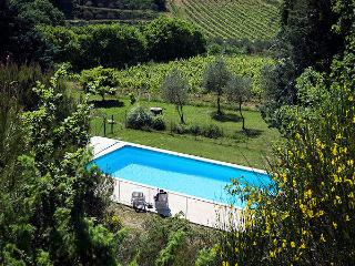 Vaison-le-Romaine Vaucluse, Villa 8p private pool, in the vine yards, Vaison-la-Romaine