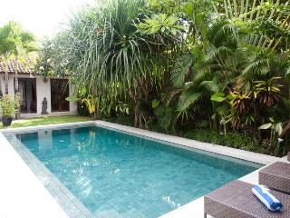 Spacious Family Villa in Seminyak