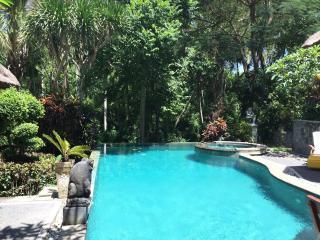 Luxurious Getaway with Stunning Jungle Views