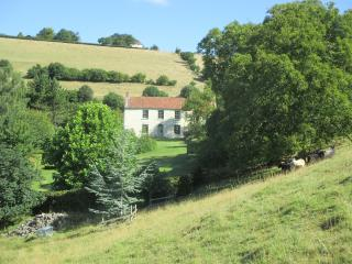Family Country house with wonderful views, Moorlinch