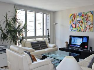 Large 2-bedroom Apart. in Center of Geneva, Ginebra