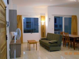 New 2 Bedroom Licensed Family Apartment with WiFi
