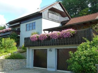 Vacation Apartment in Mistelgau - 861 sqft, nice, clean, relaxing (# 1250)