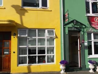Enjoy downtown of Reykjavik