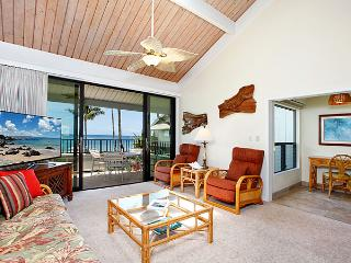 Unit 15 Ocean Front Deluxe 2 Bedroom Condo, Lahaina