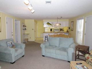 266 Driftwood Villa  - Wyndham Ocean Ridge, Isla de Edisto