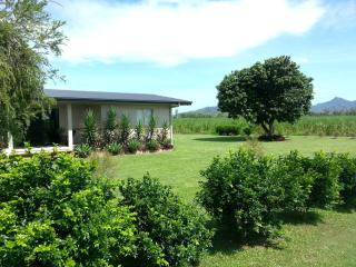 The home is secluded, set in a landscape of sugar cane fields & The Great Dividing Range.