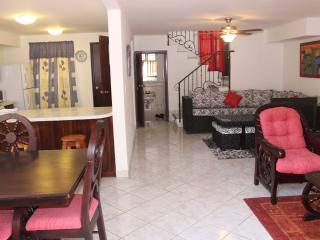 Completly furnished house in Managua