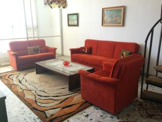 Large 2-1/2 bedroom apartment near Achuza, Ra'anana