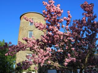 Moulin de Plaisance - Gite de charme 4 personnes, Cordemais