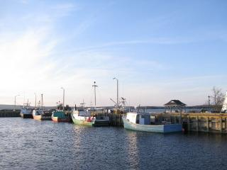 Quiet Home In Beautiful Fishing Village, Port Medway