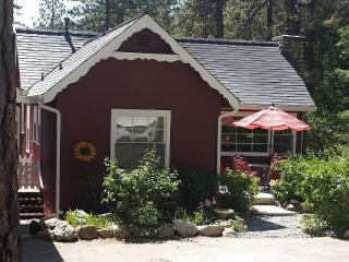 Cutest Lil Cabin in Fern Valley!, Idyllwild