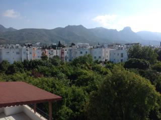 2 bedroom flat with mountain views, close to shops