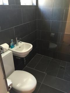 groundfloor wc and wet room