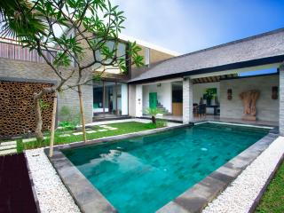 Anjali Green Luxury 2 Bedroom Villa & Pool, Petitenget