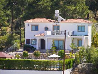 Mersinia villa, Argaka