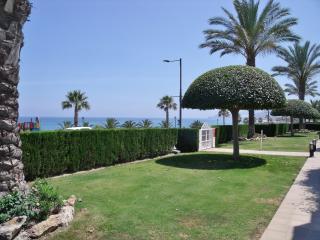 Indabella Beachfront
