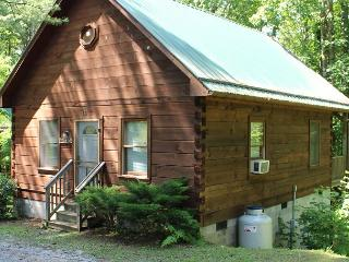 'SHADY GROVE' - Quaint Cabin ON Parkway - New Years Weekend Available!, Glendale Springs