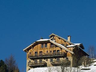 'Cloudit' in chalet with wellness near slopes, L'Alpe d'Huez