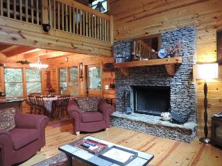 Ellijay River Cabin Rental Located on the Coosawattee River