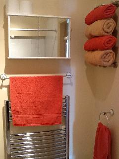 Shower room with large walk in shower, toilet and washbasin