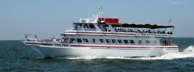 Ride ferry to Ship Island & see dolphins & sea life along the way.Historic forts, beach! THRILLING