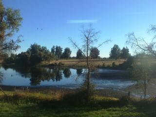 Cabañas de la Laguna