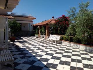 villa fanny, Trabia