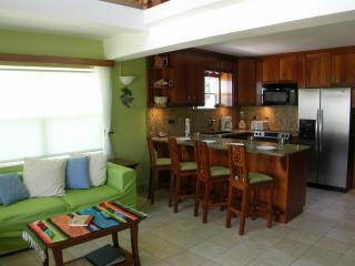 A1 Luxury by the pool & sea!, Cayo Ambergris