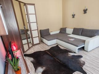 apartment ,2 bedrooms in the downtown, Budapest