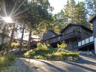 Family Retreat - Privacy, Views, Pet-Friendly, Idyllwild
