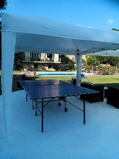 Ping pong for two or four!