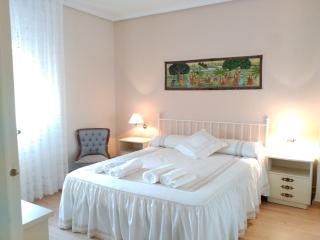 Alquiler apartament jardin chimenea Segovia 4 -10p