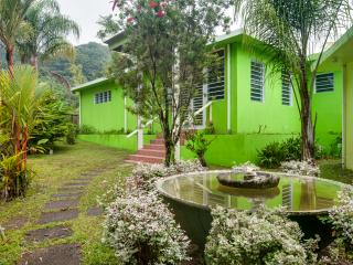 Sierra Palms Villa in the rainforest, Puerto Rico