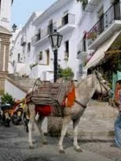 Don't be surprized if you see a donkey carrying goods up to the top of the village. No cars u