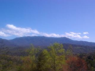 Awesome Views of Mt LeConte  minutes to Gatlinburg