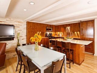 Contemporary Cottonwood Family Condo, Aspen