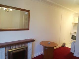 central 1 bedroom apartment with WiFi, Dublín