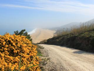 Portugal long term rental in Silver Coast, Nazare