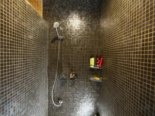 Luxury deluxe bedroom shower