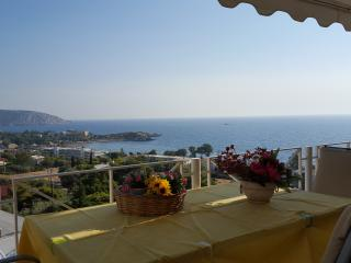 the best view of the sea in Saronida