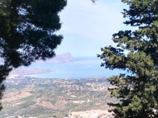 tra bosco e mare nel golfo di Castellammare