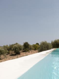 particolare piscina- Foto Futura Tittaferrante