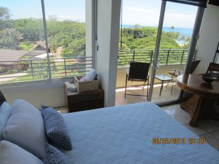 WAIKIKI CONDO W/  SPECTACULAR OCEAN & PARK VIEWS, Honolulu