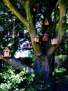 L'arbre aux oiseaux:  Au chalet d'Isa.